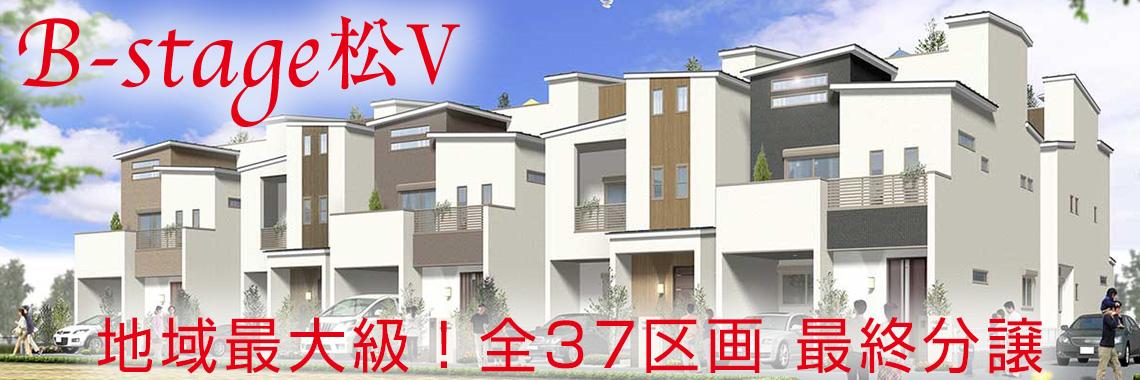 B-stage松V